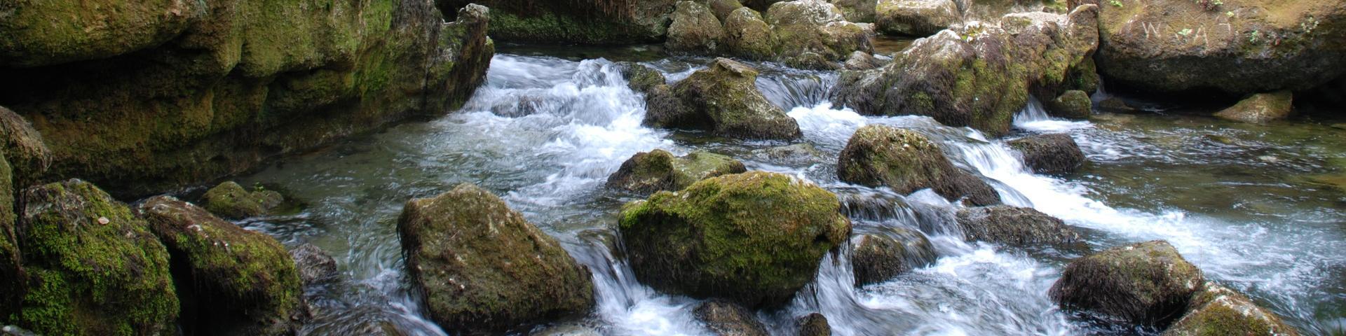 Griffon ou source latérale, Fontaine de Vaucluse