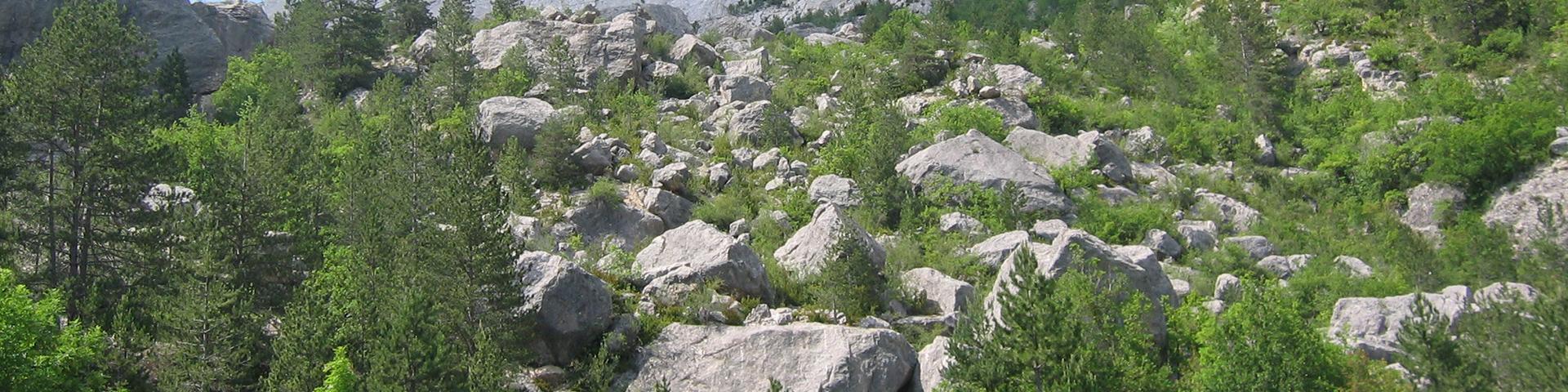 Large Holocene landslide, Drôme