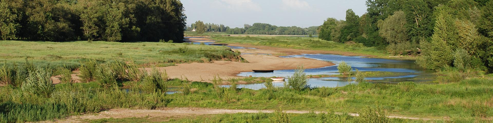 A tributary of the Loire at low water, Maine-et-Loire