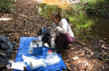 Taking samples of river water, French Guiana