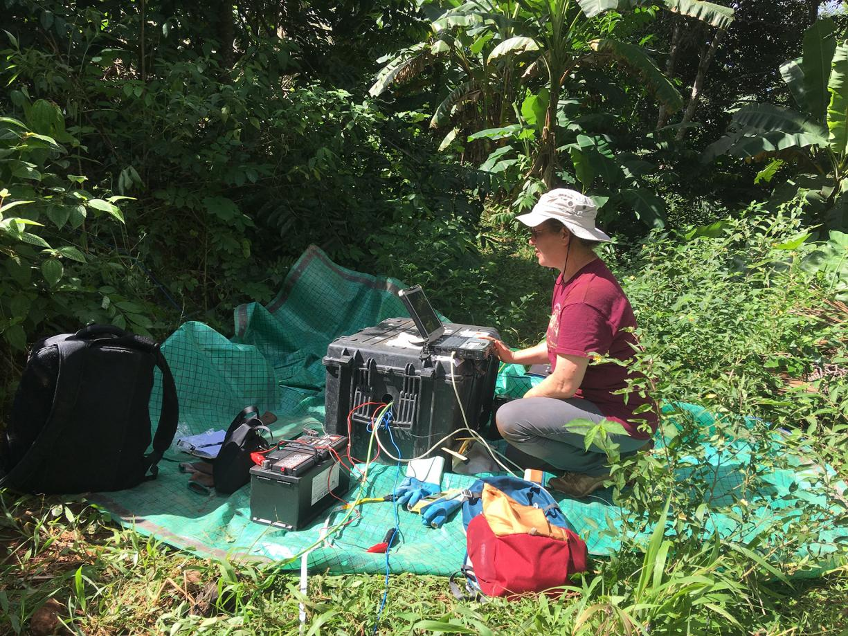 Electromagnetic geophysical measurements at Mayotte