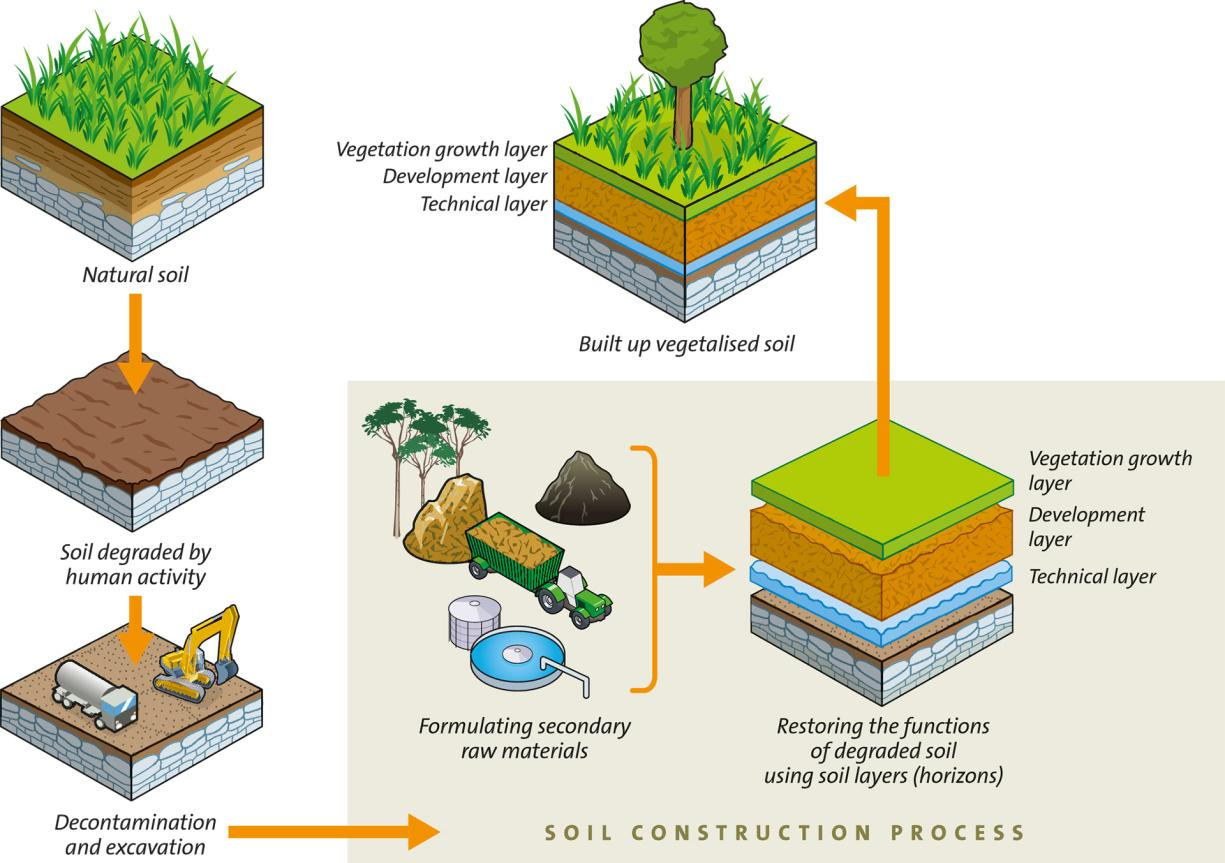 Diagram showing how soil is regenerated